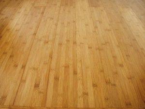bamboo-flooring-pro-con